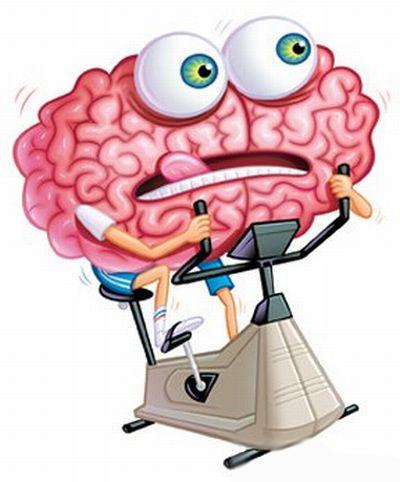 Braintraining